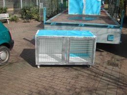 Katzenboxen-bei-der-Anlieferung2